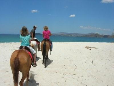 potrero_beach_horse_tour.jpg