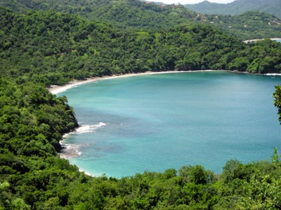 potrero_beach_inlet_forest.jpg